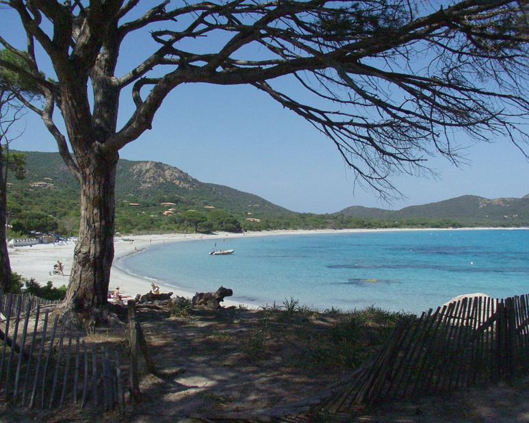 Plage du Tamaricciu dans le Top des plus belles plages de france encore et toujours en 2016