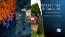Des Racines et des Ailes sur la Corse