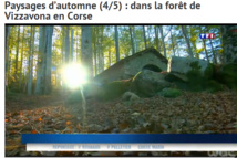 Les couleurs de l'automne en Corse...par TF1