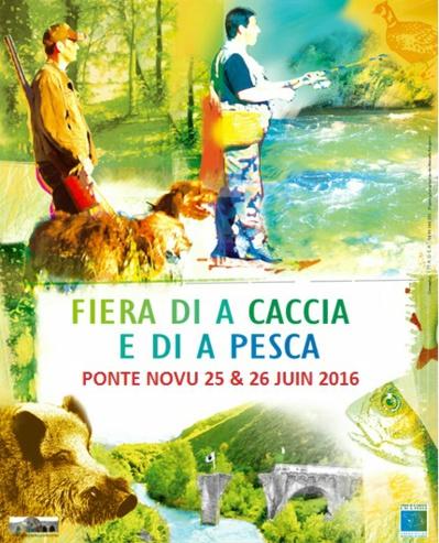 Quoi faire en Corse au mois de Juin ?