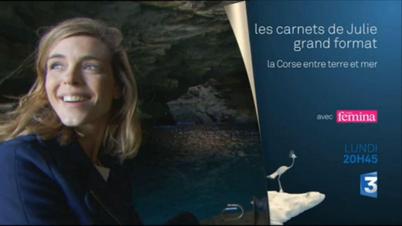 Les carnets de Julien en Corse du Sud
