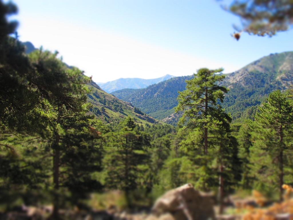 10 bonnes raisons de venir en Corse en Automne