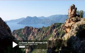 La Corse, entre mer et vents.