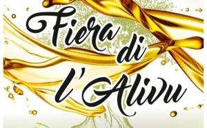 L'Olive en fête en Balagne