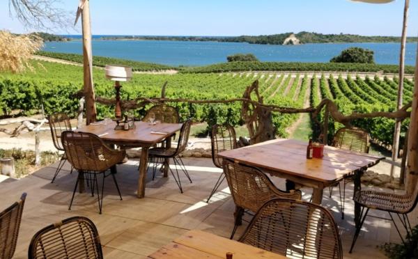 Aleria, nouvelle capitale du goût en Corse ?